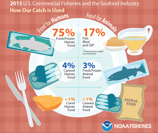 GRAPHIC-How our catch is used- NOAA- 650x550-Landscape.png