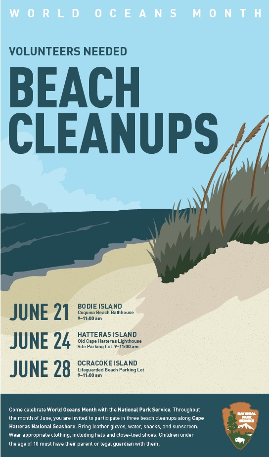 World Oceans Month - Beach Cleanups.jpg